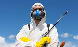 Monsanto's Roundup contains glyphosate a chemical linked to cancer