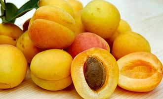 Recalled Apricots